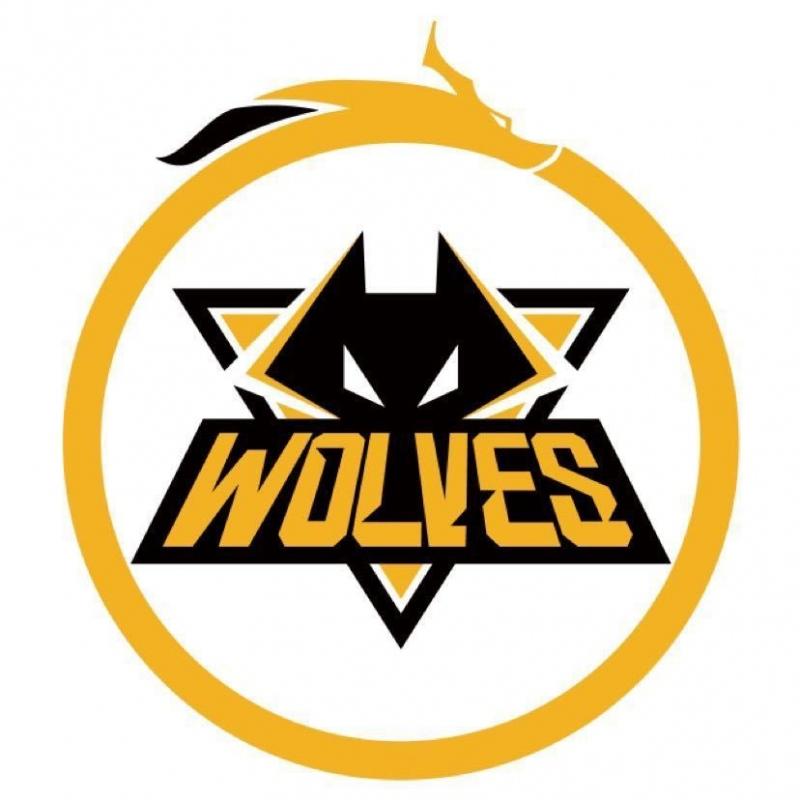 狼队进军KPL后老林终于解除封印或引入TTG选手担任首发打野